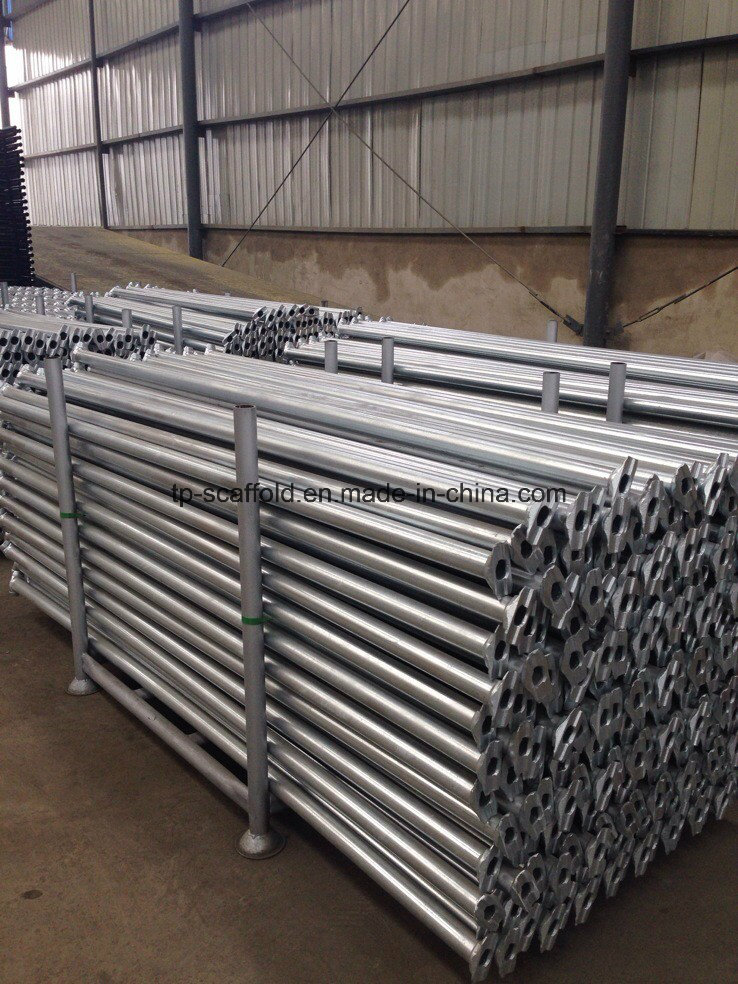 Hot DIP Galvanized Construction Material Steel Cuplock Scaffolding Ledger/Horizontal